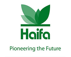 Haifa | Pioneering The Future